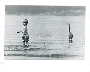 Vintage Photos 1990 Douglas Benson Dash Point Park Blue Heron Waters Boy Seascape 8X10