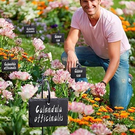 FORUP Etiqueta para Plantas, 10 Etiquetas para marcadores de ...