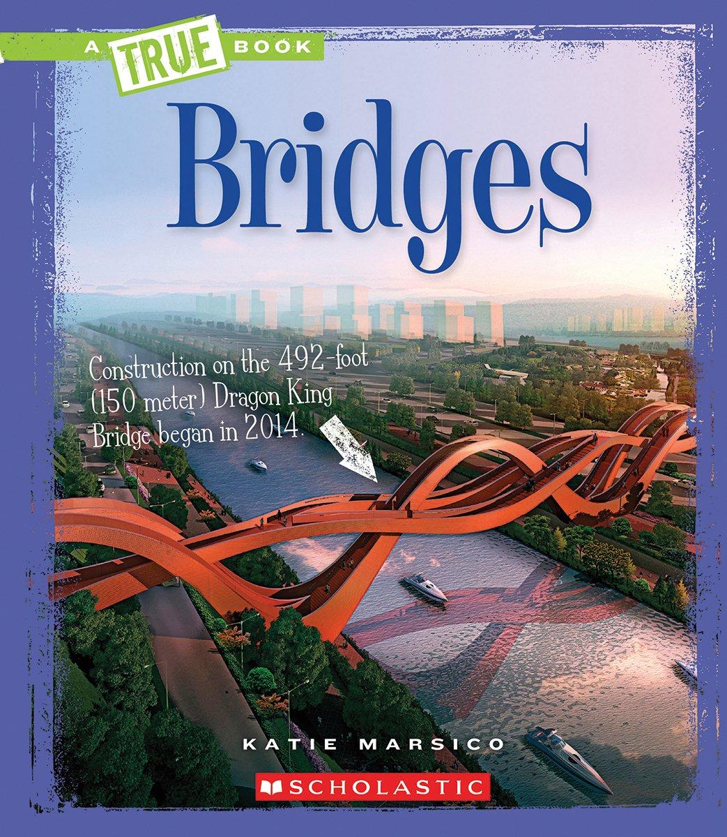 Bridges (A True Book) PDF