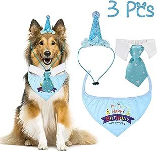 R HORSE 3 Paquetes de pañuelos de cumpleaños para Perro Corbata ...