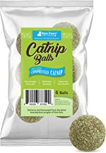 Raw Paws Compressed Catnip Ball Toy, 6 Pack - Catnip Toys for Indoor Cats - All Natural Catnip for Cats - Cat Toy Interactive Ball - Cat Kicker Toy Catnip Cat Toys - Cat Nip Kitty Toys - Cat Ball Toy
