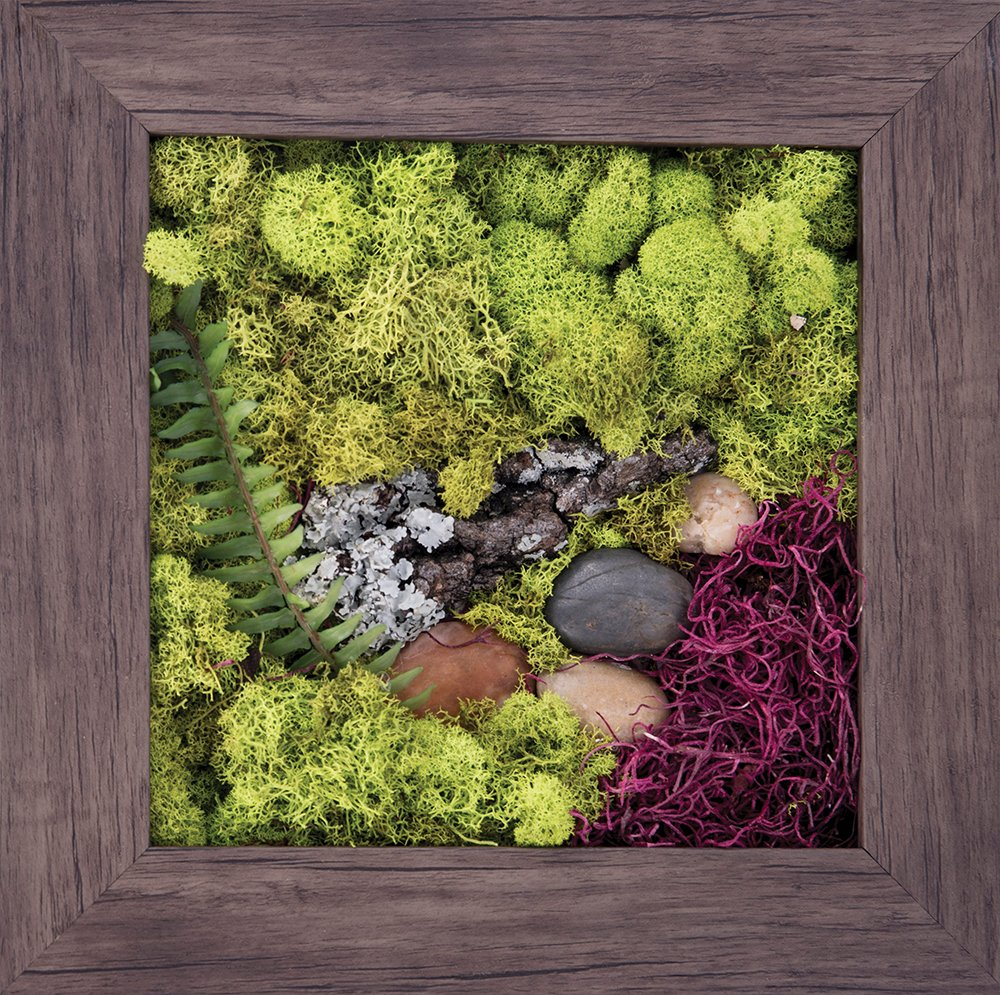 Carpentree 11''x11'' Touch of Nature-Biophilic Framed Art by Carpentree