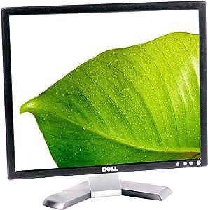Dell E198FP 19
