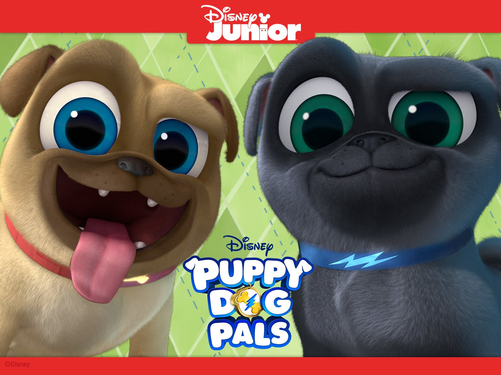 Amazon.com: Puppy Dog Pals Volume 1: Leslie David Baker, Issac Ryan Brown,  Jessica DiCicco