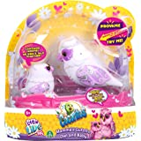 Little Live Pets - Cocoritos: búho madre y su bebé, colores surtidos  (Giochi Preziosi) (importado de Inglaterra)