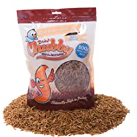 Chubby Dried Mealworms 500g Bag for Wild Birds