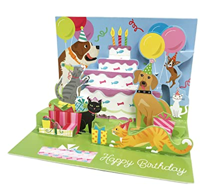 Festive Party Cats Dogs Themed Pop Up 5quot X 7quot Celebration Happy Birthday