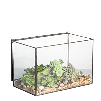NCYP Rectangle Cuboid Desk Clear Glass Geometric Terrarium Box with A Lid Tabletop Succulent Air Plant Moss Fern Planter Black Flower Pot 4 x 4.87 x 6.75 inch(No Plants) : Garden & Outdoor