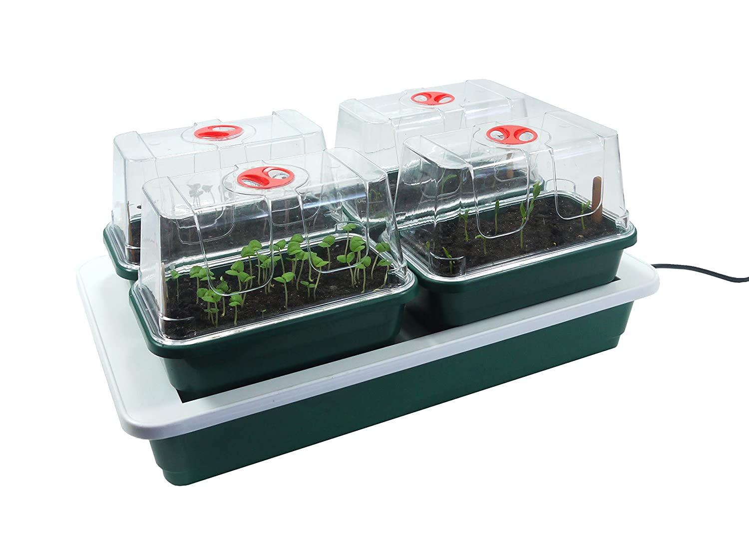 Britten & James® Super Quad Heated Windowsill Propagator set. Four professional quality mini propagators on a gently heated tray. The clear lids have high sides so you can keep your tender plants in the protected environment for longer. Designed to fi
