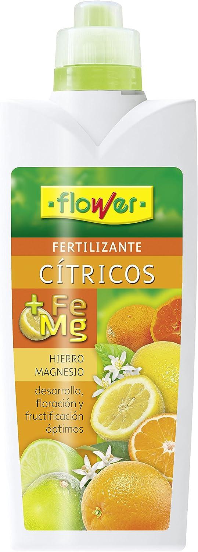 Flower 10731 10731-Abono líquido cítricos, 1000 ml, No Aplica, 10.5x6.2x28.5 cm