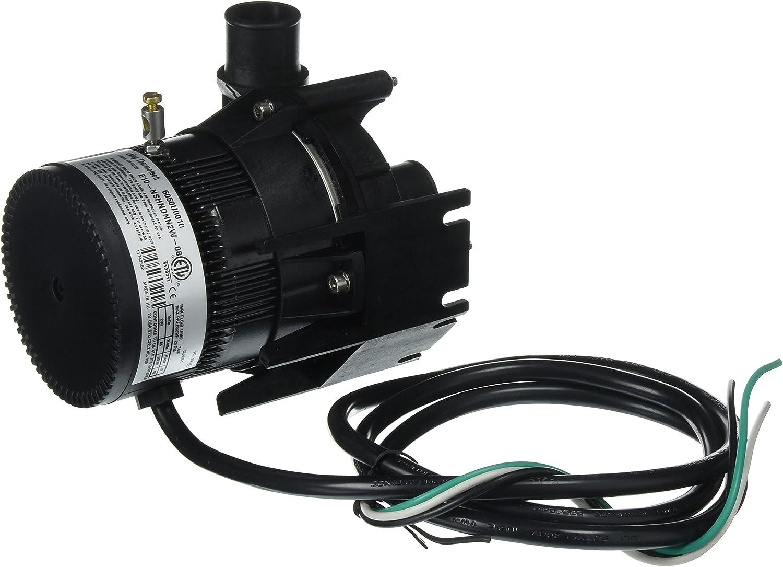 Laing E10-NSHNDNN2W-08 Spa Circulation Pump , Black
