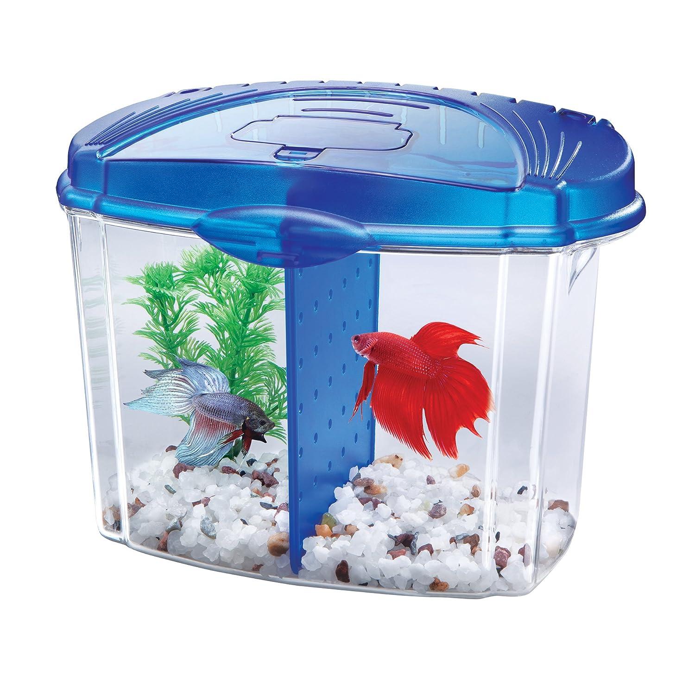 Aqueon Betta Bowl Aquarium Kit in Black Half Gallon 100101216
