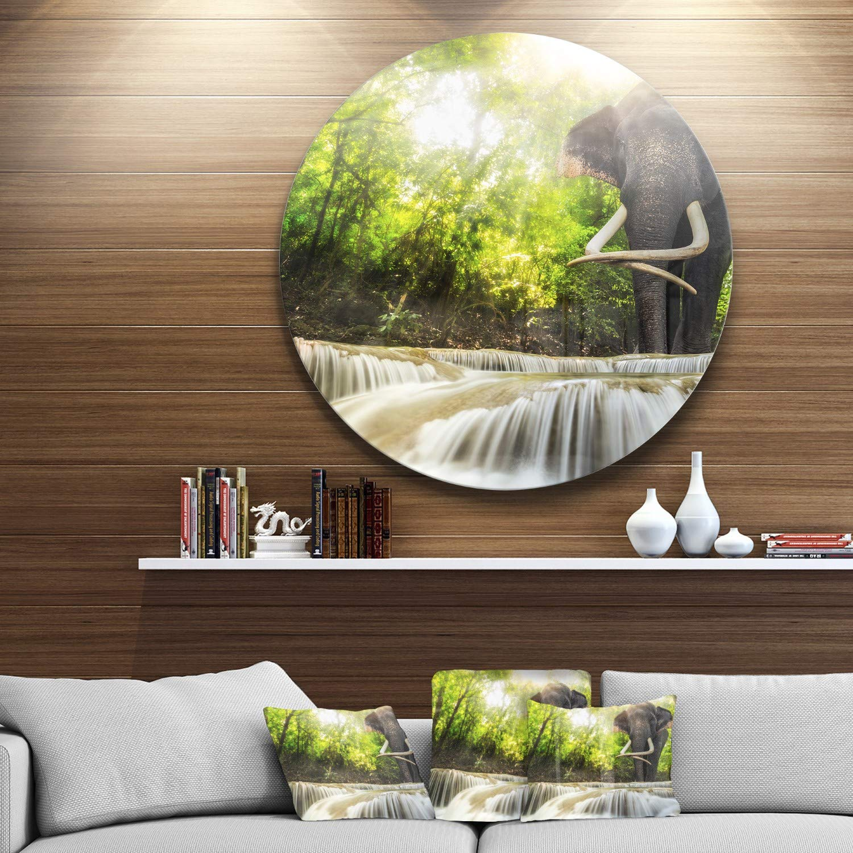 Disc of 38 inch 38x38-Disc Gray//Green Designart MT6475-C38 Wall Art