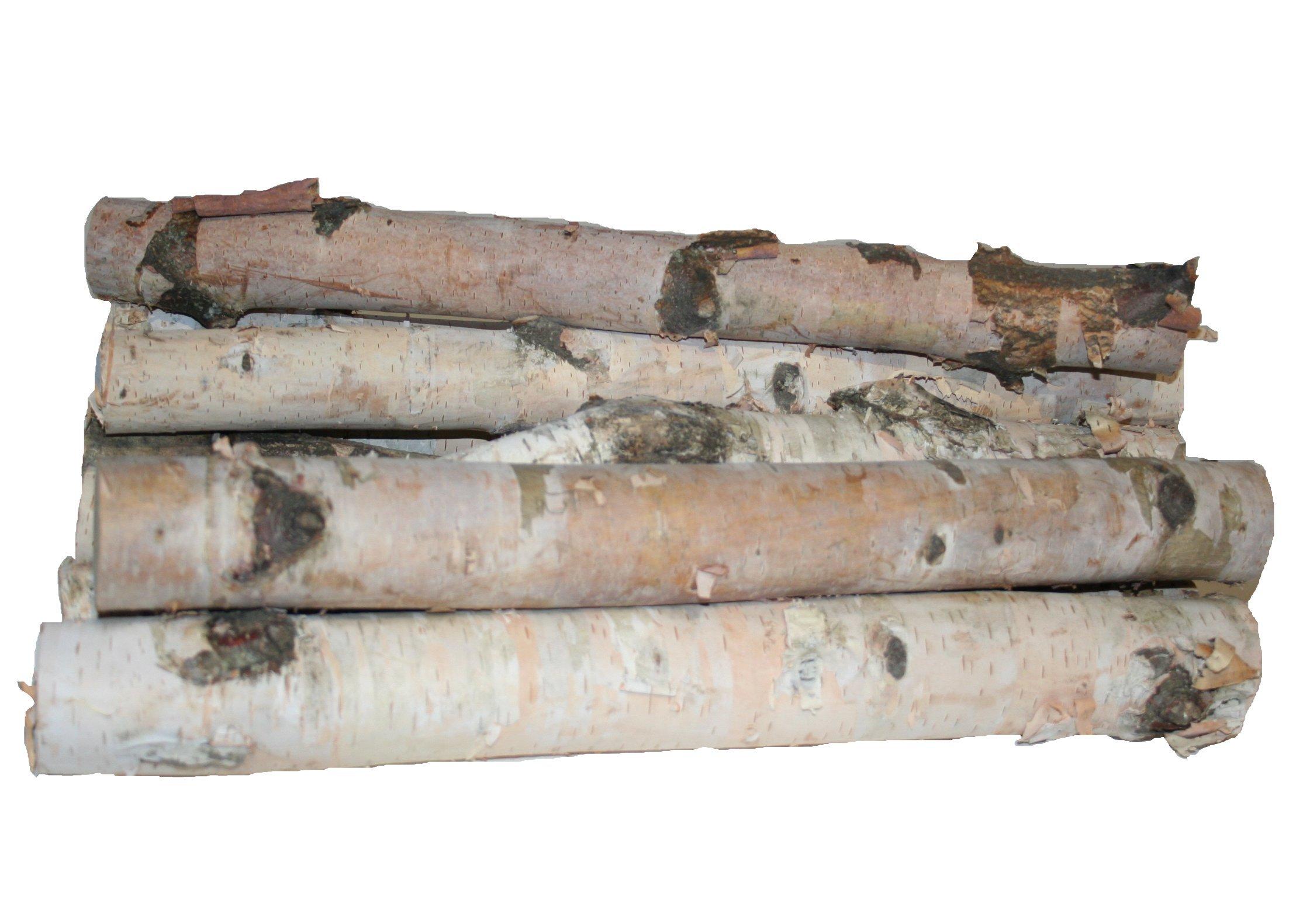 Wilson Enterprises Northern White Birch Logs, Set of 8 by Wilson Enterprises