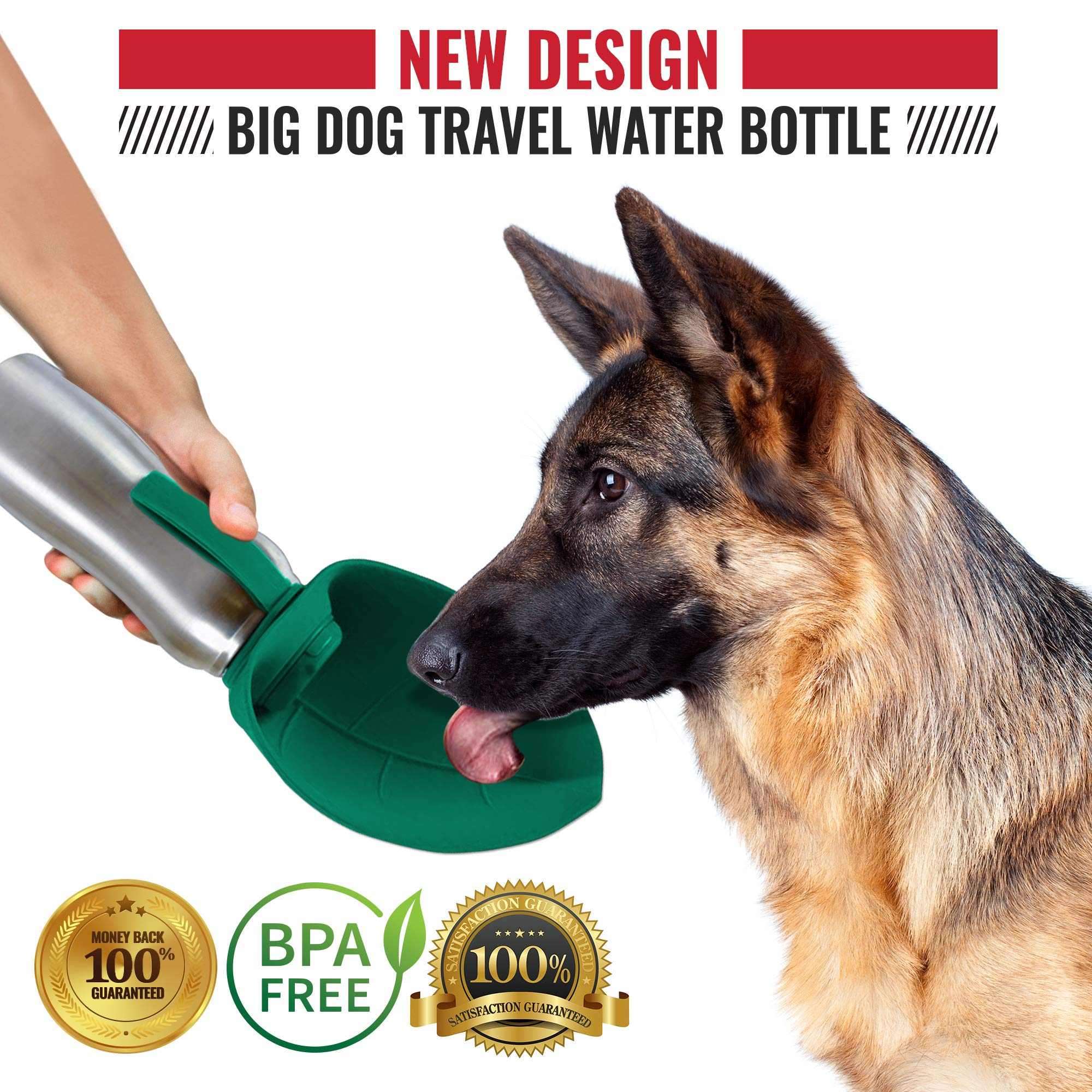 PupFlask Portable Water Bottle For Walking | 24 OZ Stainless Steel | Convenient Dog Travel Water Bottle Keeps Pup Hydrated | Portable Dog Water Bowl & Travel Water Bottle For Dogs (Quetzal Green) by Tuff Pupper (Image #5)