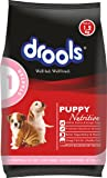 Drools Puppy Starter Dog Food, 1.2kg