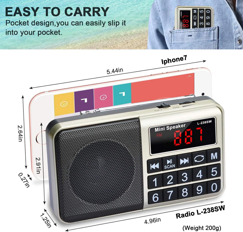 Songway Radio SW//FM//AM Radio FM Multifonctions Portable avec Haut-Parleur en n/éodyme pour connecter Un Ordinateur//t/él/éphone Portable//Balayage Automatique et m/émoriser Un Canal Radio Gold