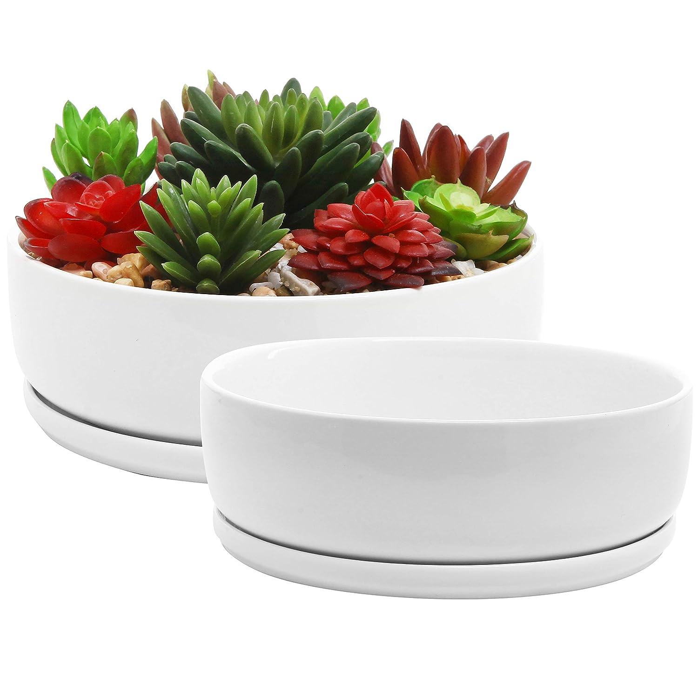 Set of 2 Modern Round White Ceramic Planter Bowls with Drip Trays, 6-Inch 7.5-Inch