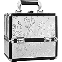 HST Small Professional Beauty Box Vanity Case Cosmetic Makeup Organiser 9 compartment (Silver Rose)