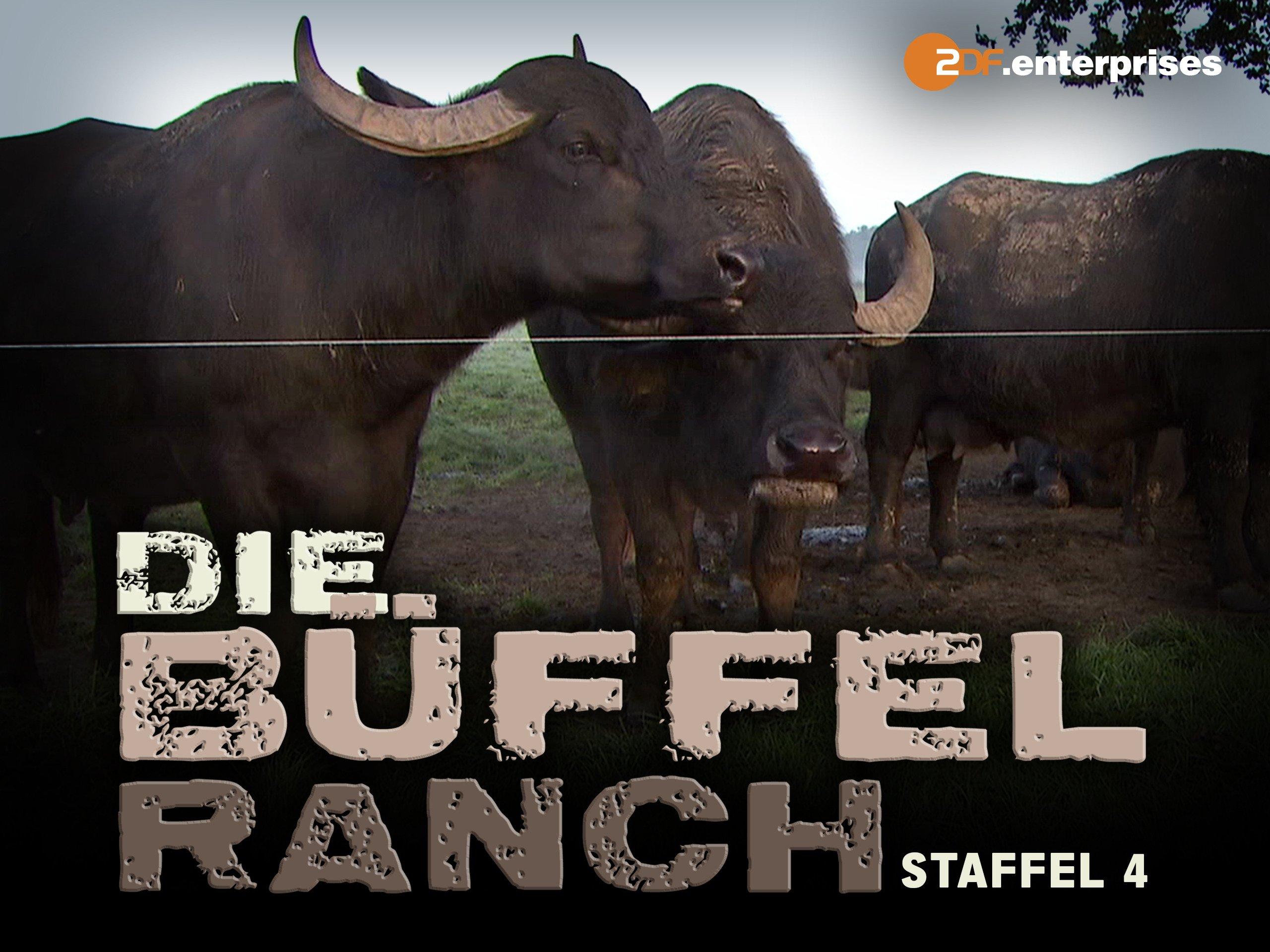 Amazonde Die Büffelranch Staffel 4 Ansehen Prime Video