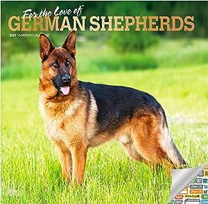 German Shepherds Calendar 2021 Bundle - Deluxe 2021 German Shepherd Wall Calendar with Over 100 Calendar Stickers (GSD Gifts, Office Supplies)
