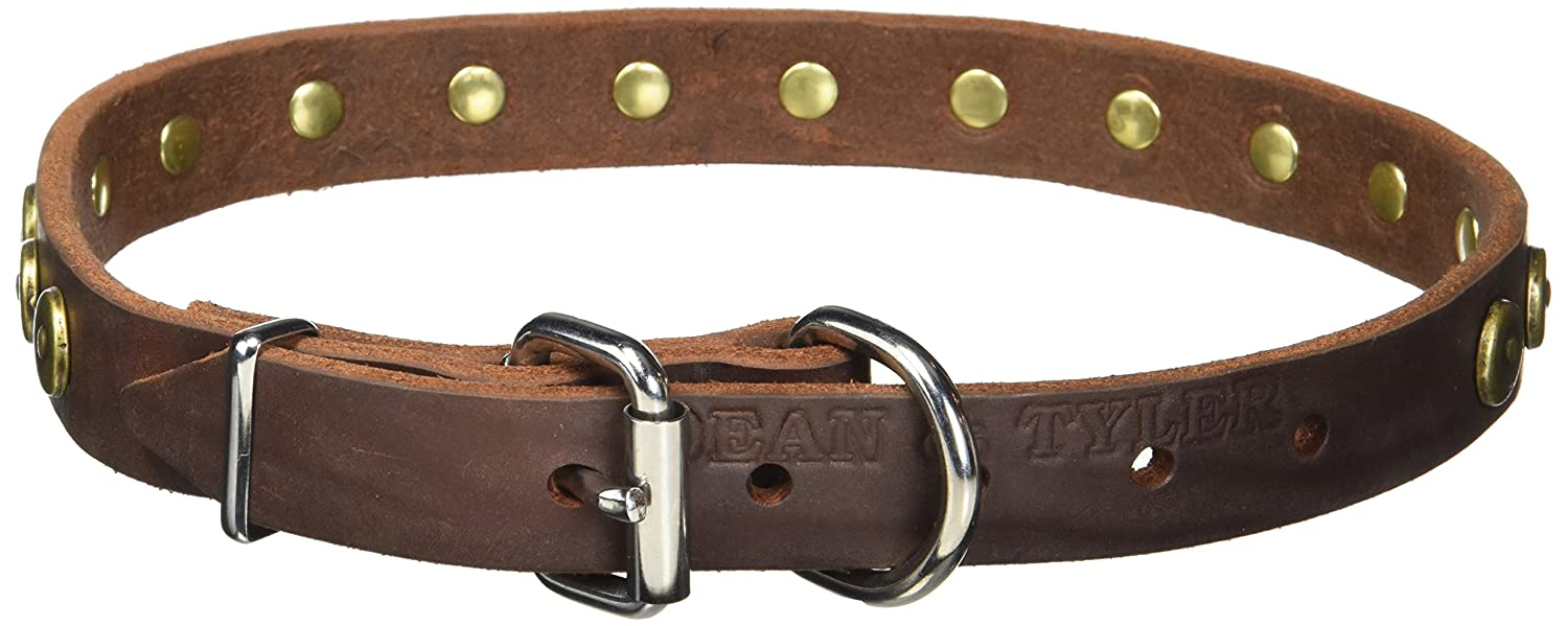 Dean and Tyler DOT MATRIX, Leather Dog Collar with Solid Brass Circles Brown Size 22-Inch by 1-Inch Fits Neck 20-Inch to 24-Inch