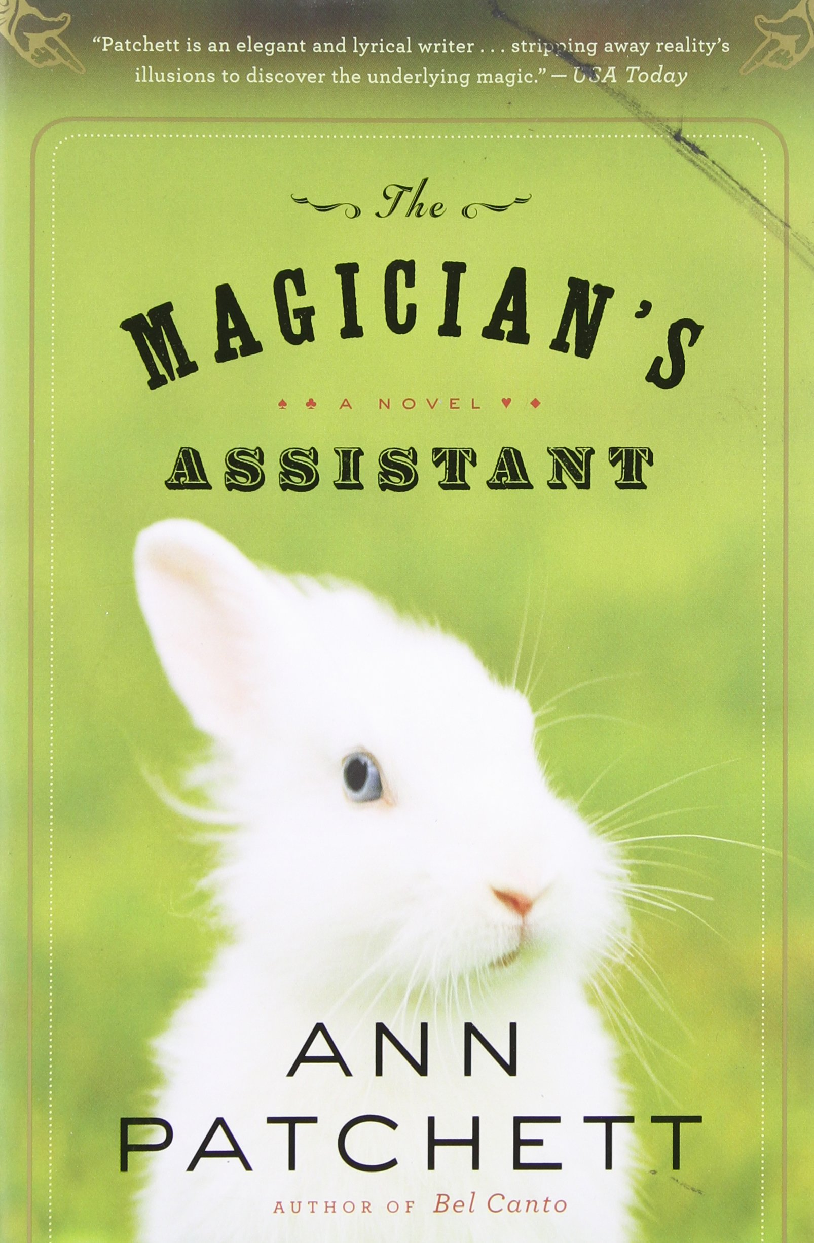 Download Magician's Assistant pdf