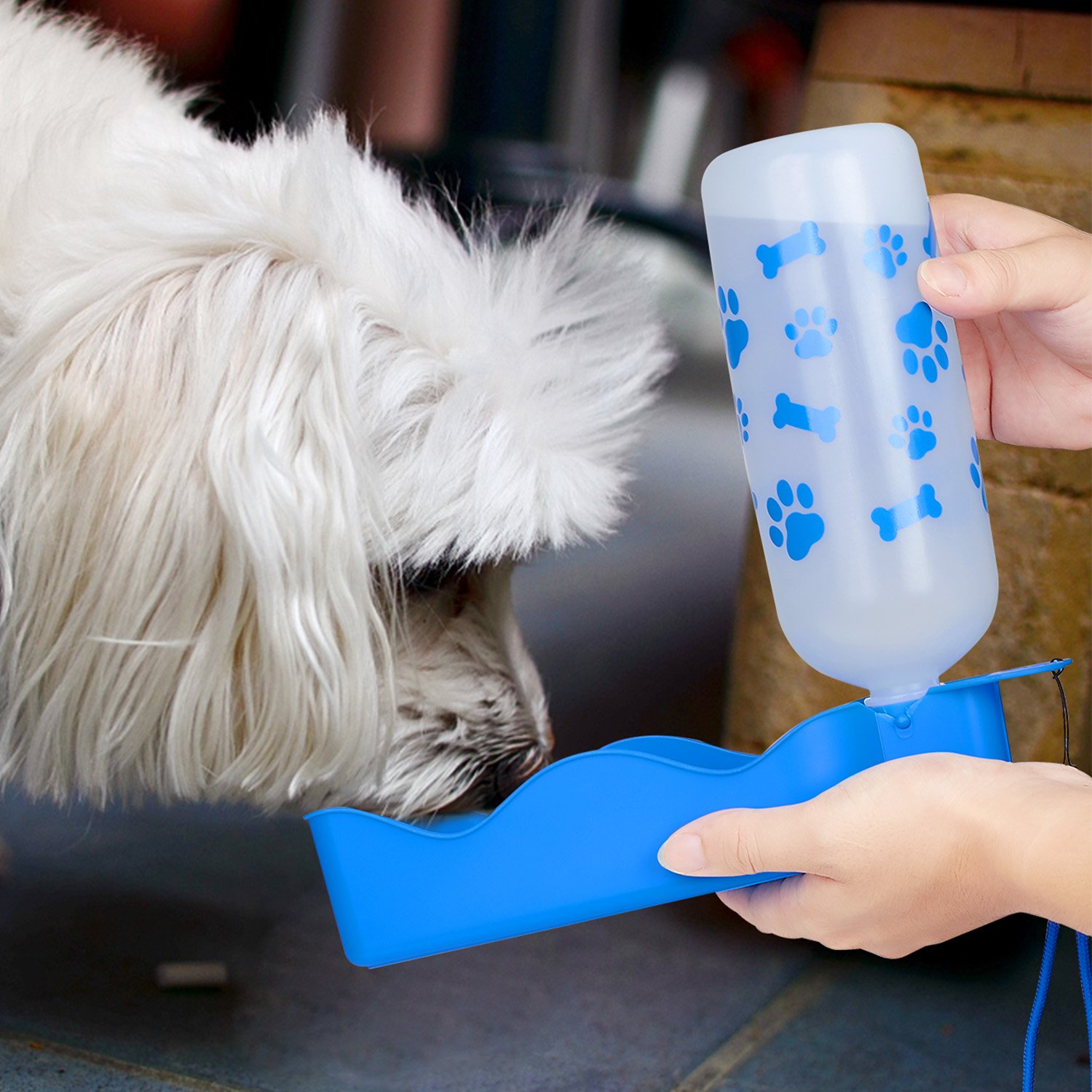 ANPETBEST Travel Water Bottle 650ML / 22oz Water Dispenser Portable Mug for Dogs,Cats and Other Small Animals (Blue-650ML) by ANPETBEST (Image #1)