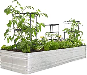 Premium Raised Garden Bed - Sturdy and Easy to Assemble Galvanized Steel Planter Box - Versatile Metal Planter is Perfect to Grow Your Beautiful Flowers, Herbs, and Vegetables