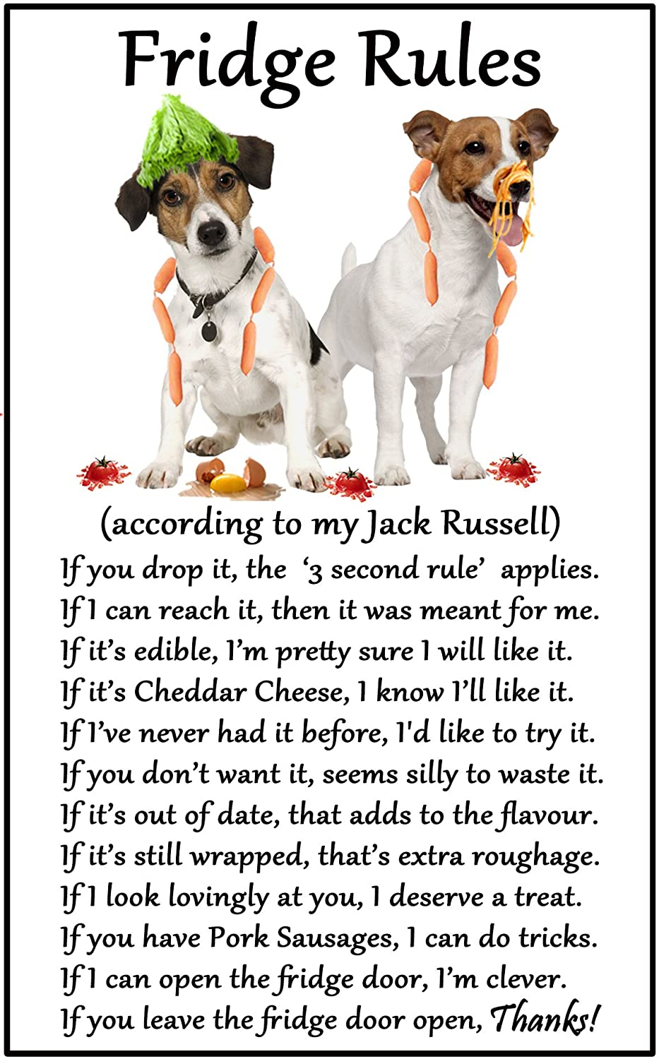 Jack russell dog design novelty socks in grey amazon clothing jack russell terrier gift fridge rules large fun flexible fridge magnet size 16cms nvjuhfo Images