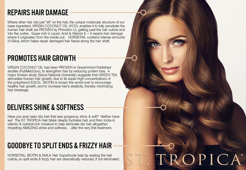 Amazoncom ST TROPICA Coconut Oil Hair Mask 3 Hair Masks 1