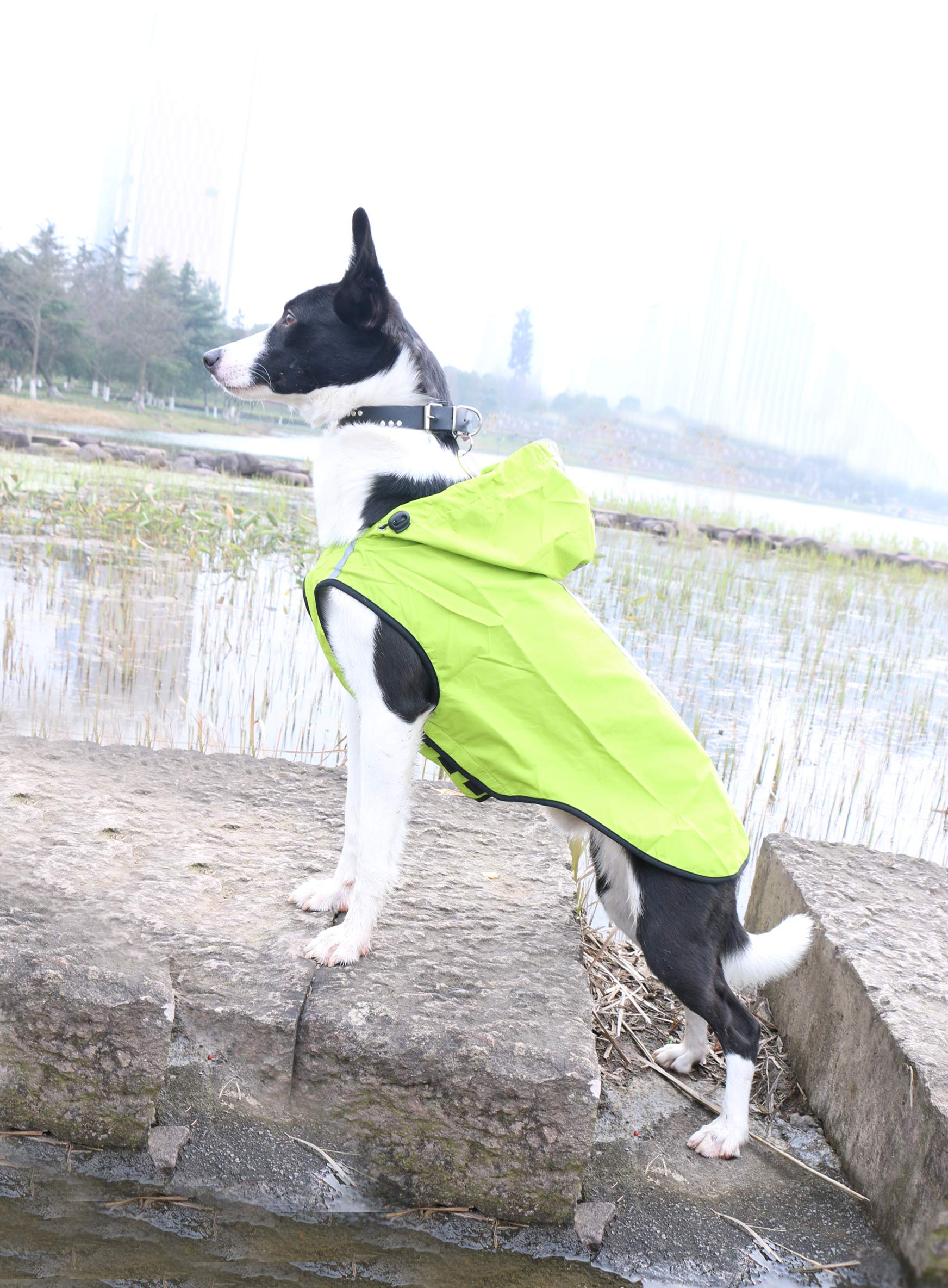 SENYEPETS Waterproof Dog Raincoat, Lightweight Packable Jacket with Reflective Stripes for High Visibility Safety, Adjustable Hood Poncho for Small Medium Large Dogs (XXL, Green) by SENYEPETS