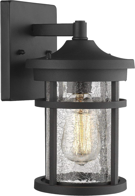 Emliviar Outdoor Light Wall Mount, Crackle Glass in Black Finish, 2085B2 BK