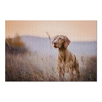 Hungarian Hound Pointer Vizsla Dog in Autumn in a Grassy Field 9019199 (Premium 500 Piece Jigsaw Puzzle for Adults, 13x19, Made in USA!): Toys & Games
