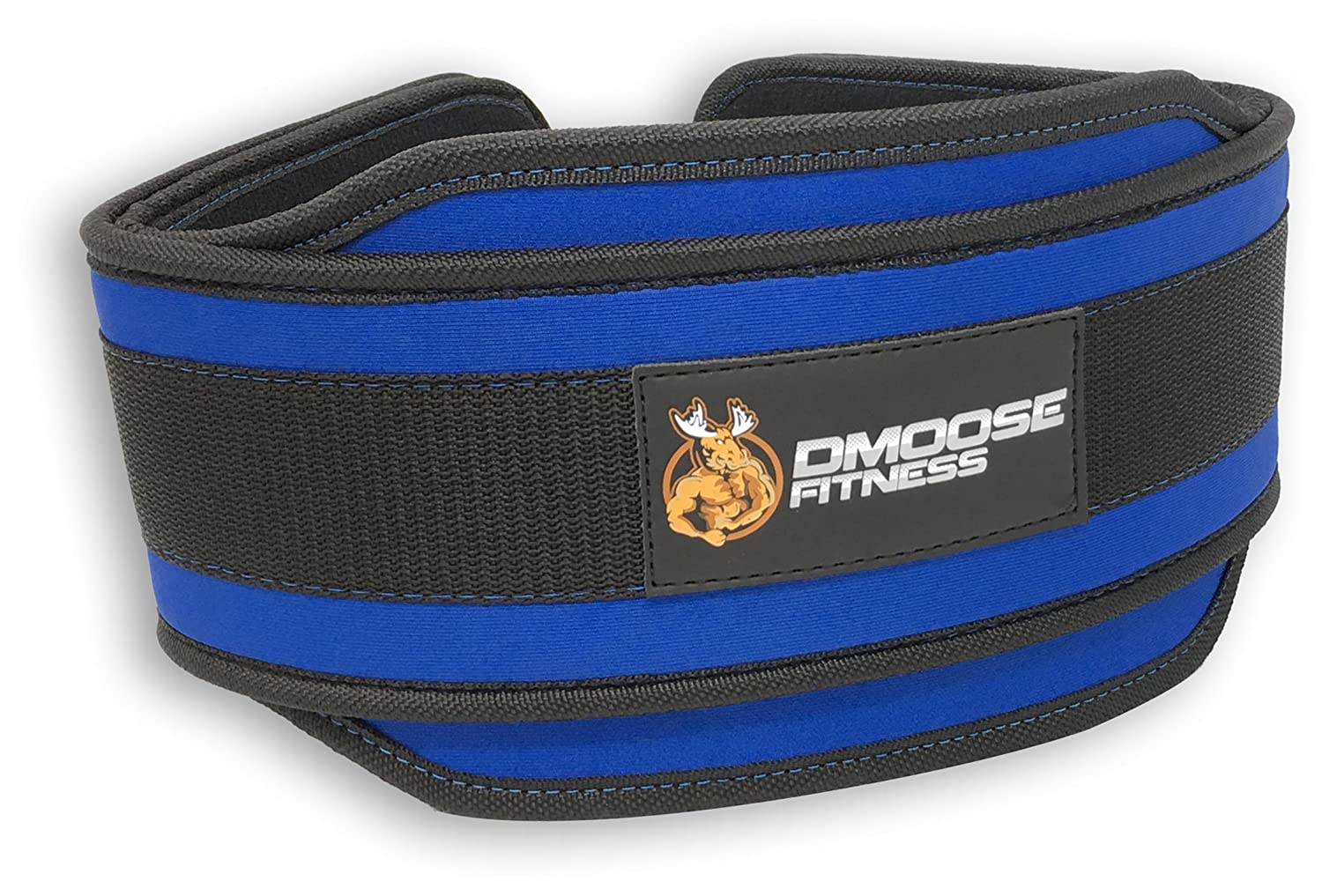 Premium Dip Belt with Chain by DMoose Fitness