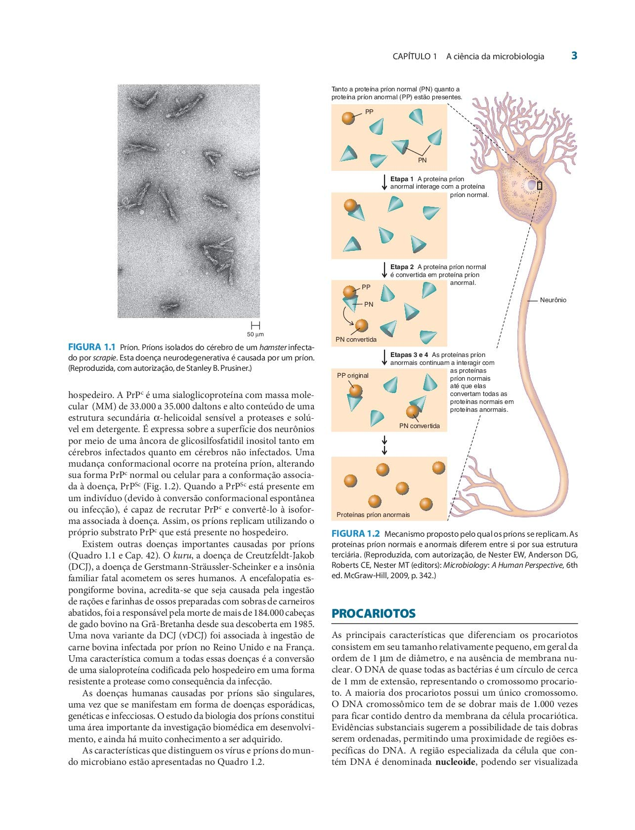 Microbiologia Médica. De Jawetz, Melnick e Adelberg Em ...