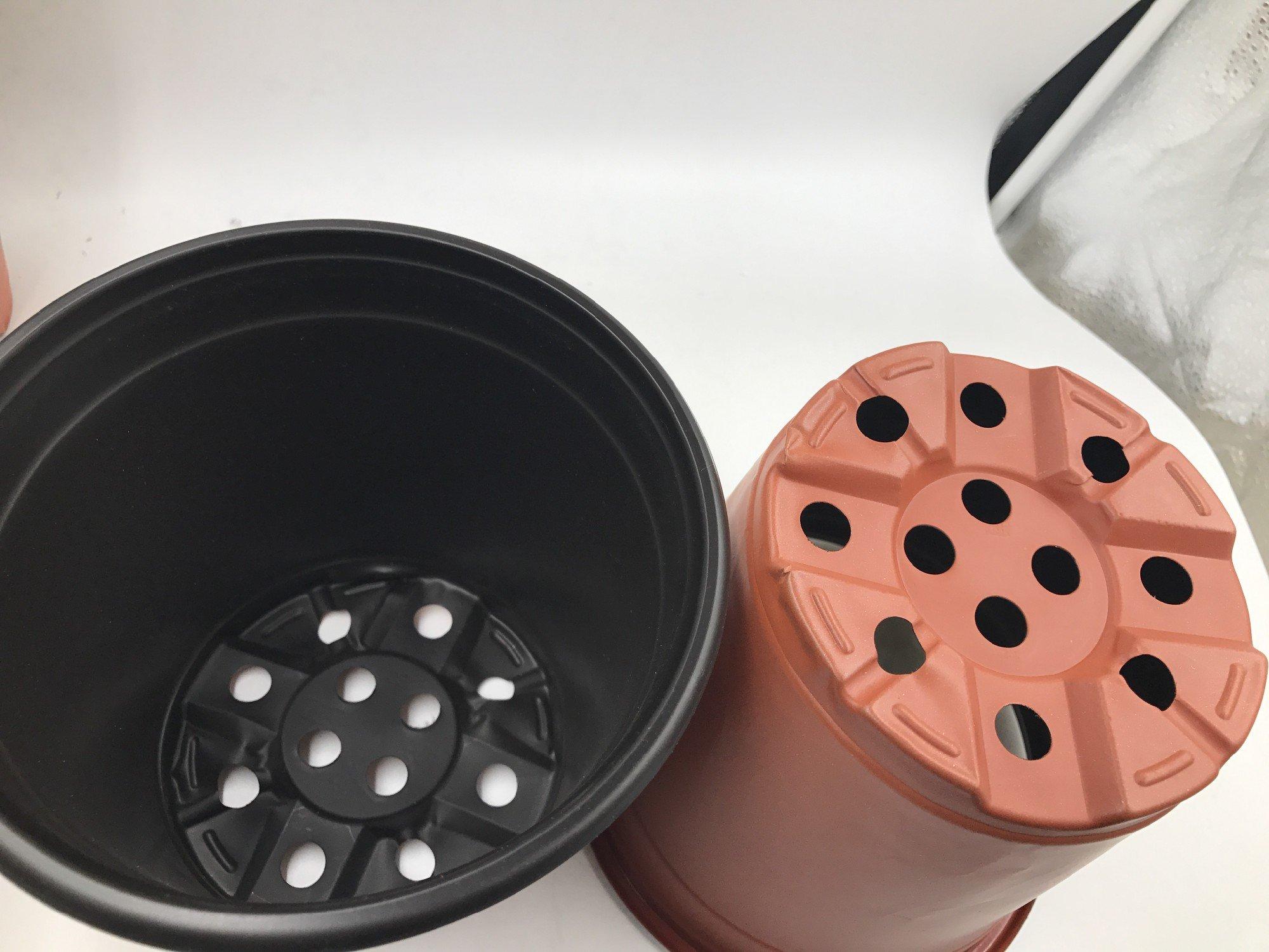100 Pack 6'' Plastic Flower/Plants Seeding Nursery Pots Pack of 100