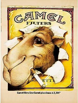 Amazon Com Bumblebeaver Camel Advert Cigarettes 1976 Fine Art Print Poster Home Decor Bb8061b Home Kitchen
