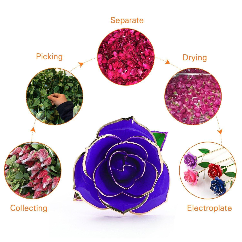 pour la Saint Valentin Fête des Mères Anniversaire Cérémonie avec Boîte Cadeau de Luxe Magicpeony 24K Plaqué Or Rose Rose Eternelle élégants Jolies Romantique Fleur
