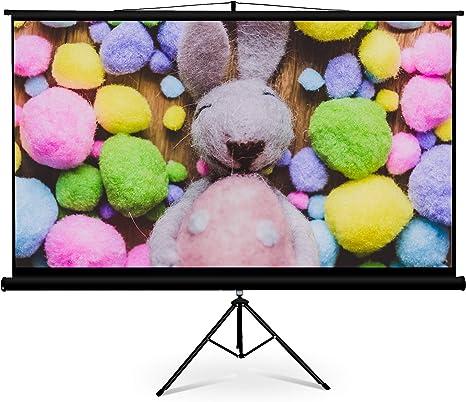 Amazon.com: FurniTure - Pantalla de proyector de vídeo con ...