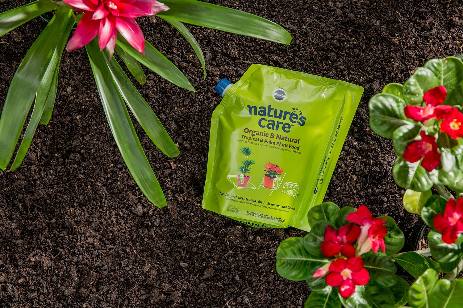 Amazon.com : Miracle-Gro Natures Care Organic and Natural Tropical and Palm Plant Food : Garden & Outdoor