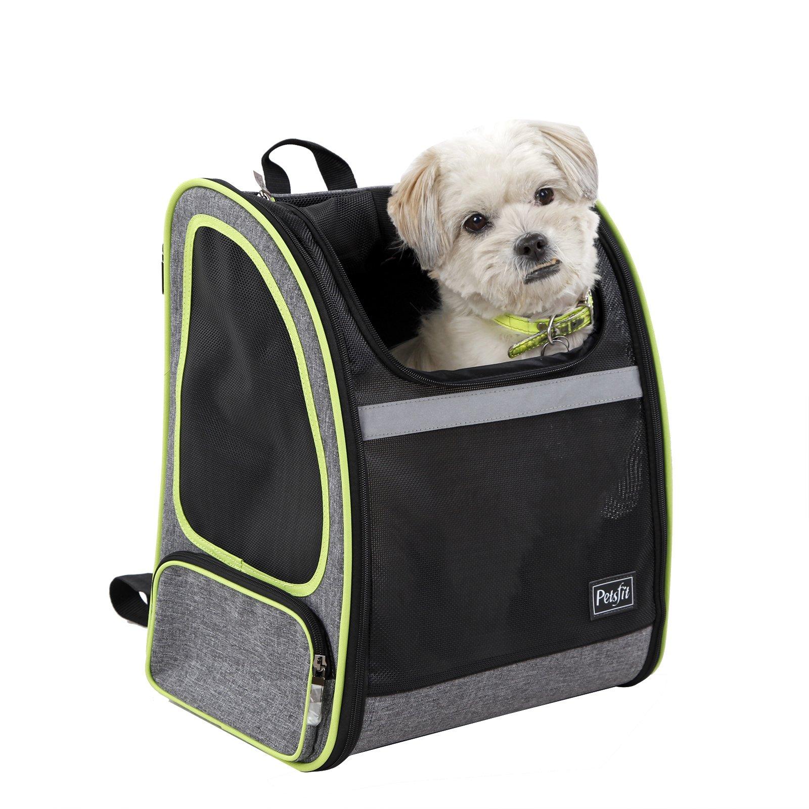 Best Rated Dog Backpacks