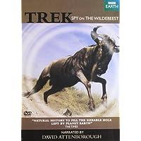 David Attenborough -Trek Spy on Wildbeest