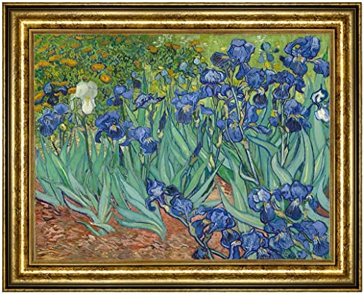Irises by Vincent Van Gogh Giclee Museum Size Reproduction on Canvas