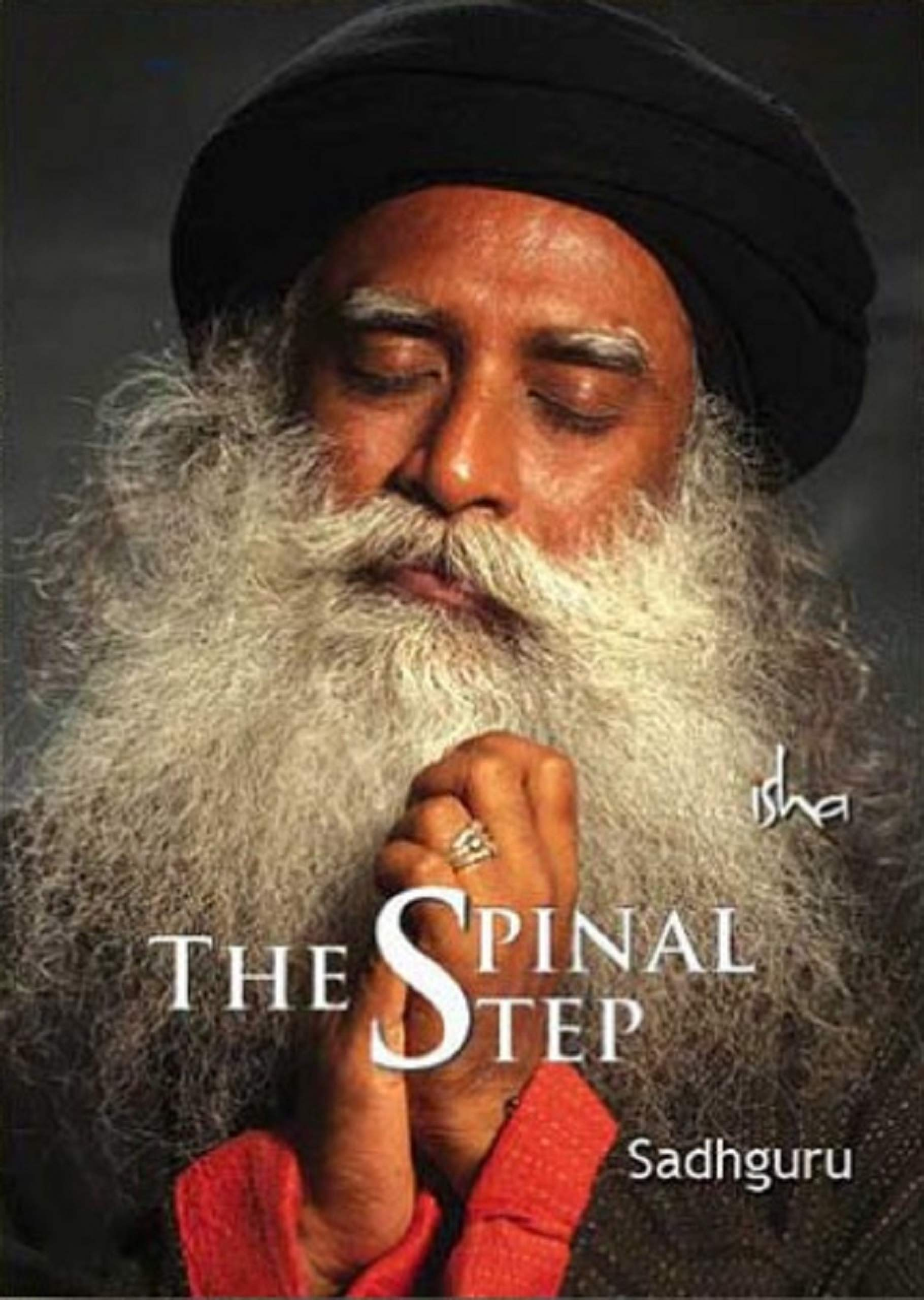 The Spinal Step  English Edition