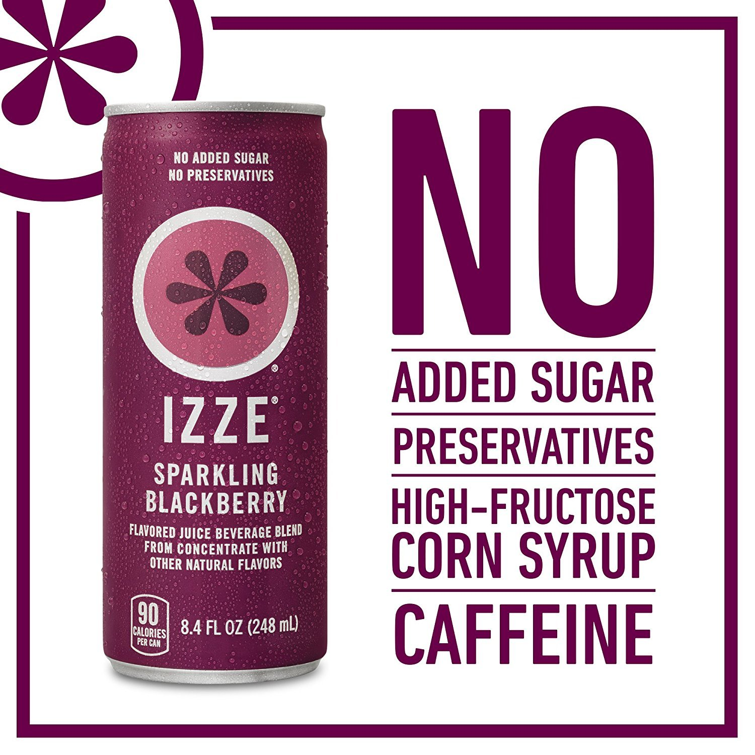 IZZE Fortified Sparkling Juice, Blackberry, Pack of 24, 8.4 oz Cans (Pack of 2)