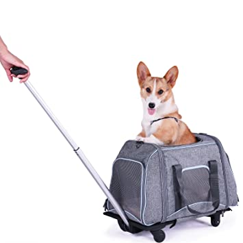 Petsfit Pet Travel Stroller, Dog Puppy Pram Jogger with 4 Wheels, Trolley  Carrier with Car Safety Belt Buckle, Dog Stroller, 58cm x 33cm x 35cm