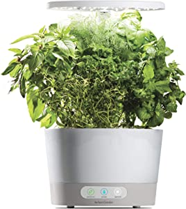 AeroGarden Harvest 360, White