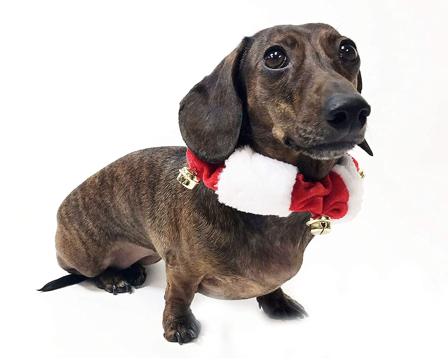 Midlee White//Red Christmas Plush Bell Collar Large