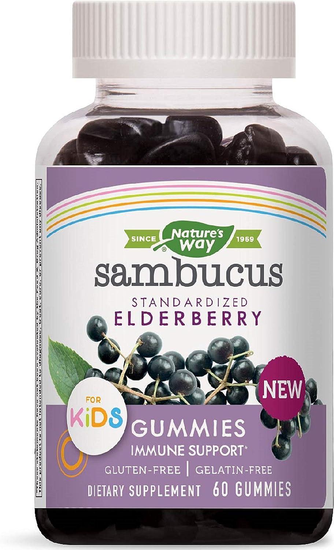 Nature's Way Sambucus Elderberry Kid's Gummies Herbal Supplements, 60 Count   Black Elderberry  Vitamin C   Zinc  : Health & Personal Care